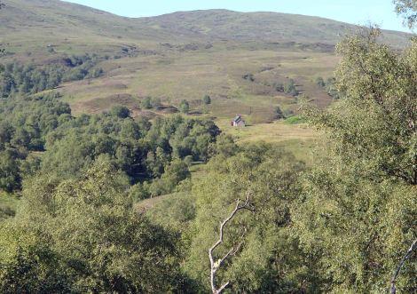 Glenbuck Bothy
