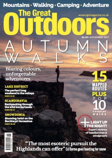 TGO-Nov-cover-SMALL-390x547